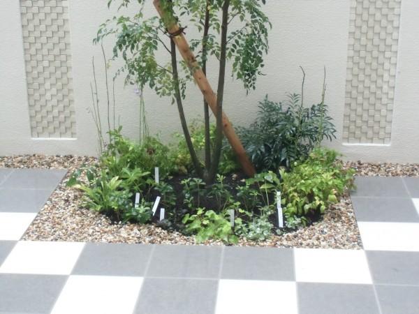 上質な坪庭