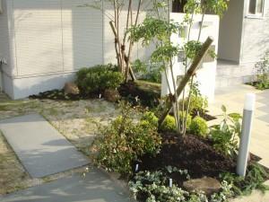 植物の紅葉や結実を楽しむ庭